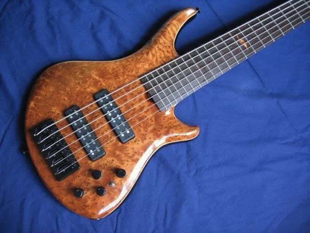 Thuya bass