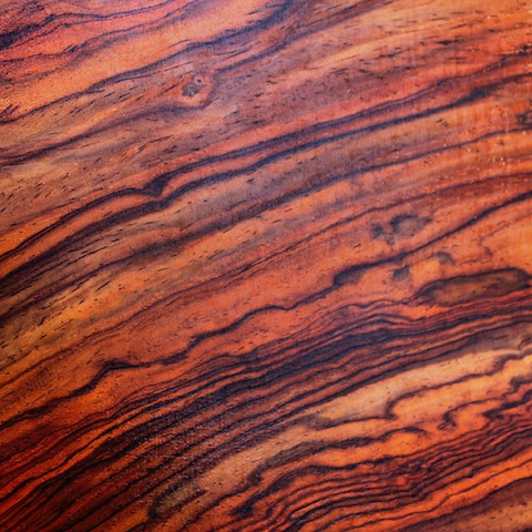 cocobolo - up close