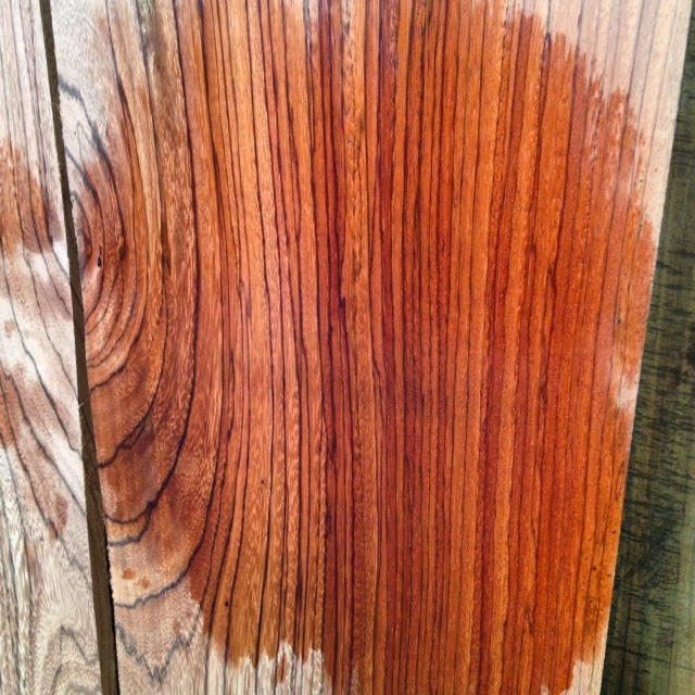 Red Zebrawood